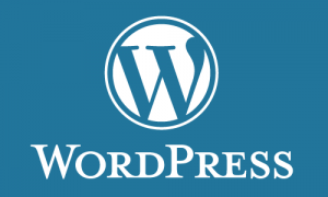 Cách sửa lỗi trắng trang trong wordpress